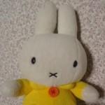 junko さんのプロフィール写真